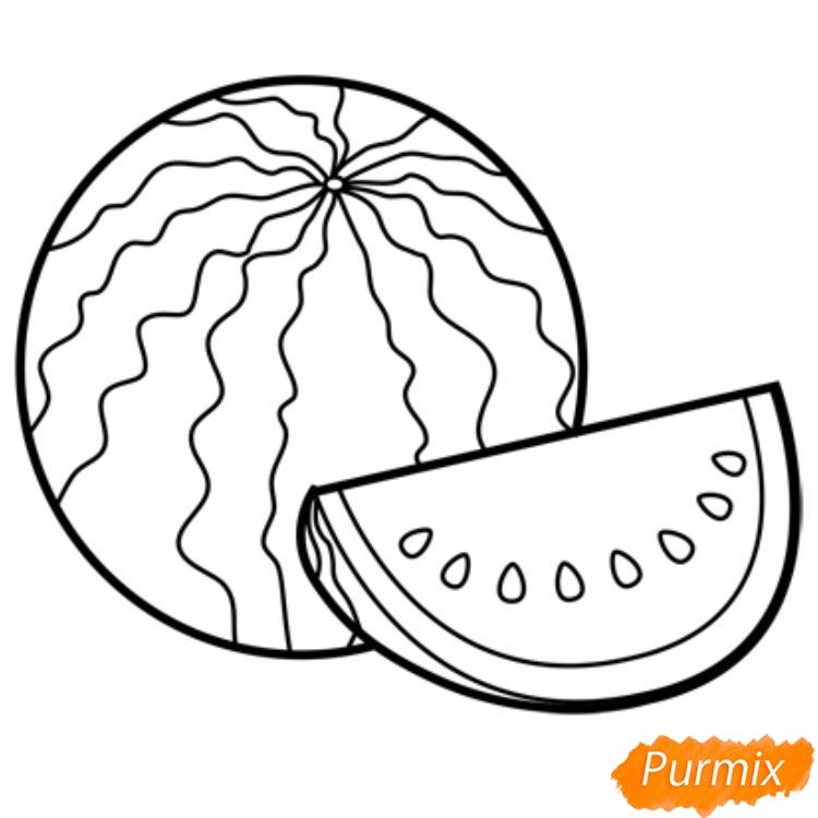 Рисуем арбуз   для начинающих - шаг 8