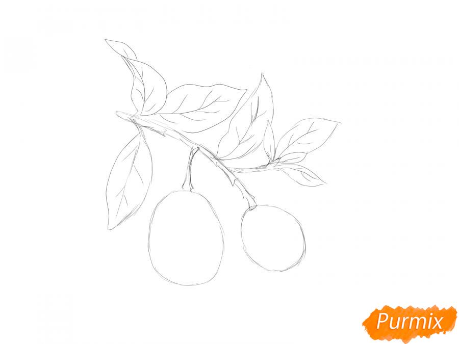 Рисуем авокадо на ветке - шаг 3