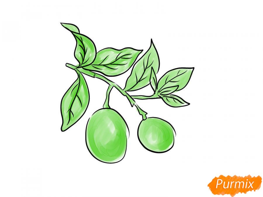 Рисуем авокадо на ветке - шаг 5