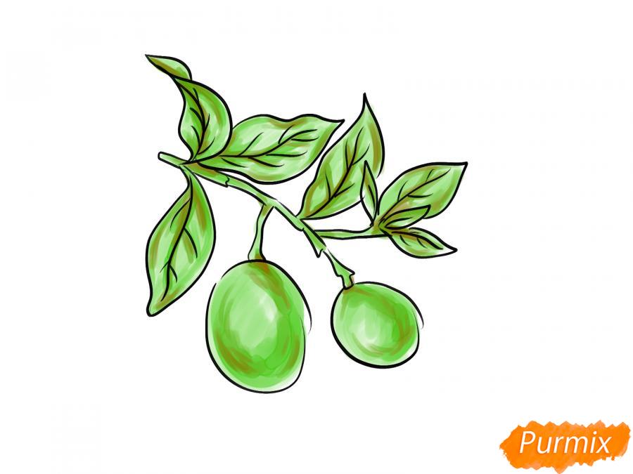 Рисуем авокадо на ветке - шаг 6