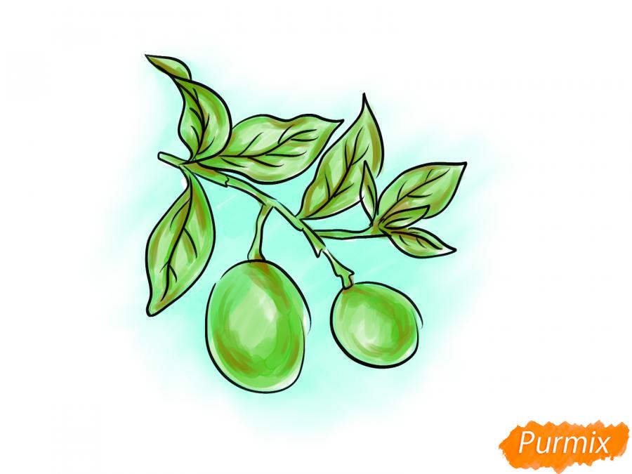 Рисуем авокадо на ветке - шаг 7