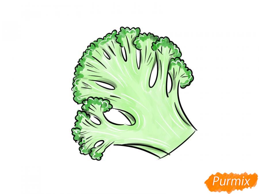 Рисуем брокколи в разрезе - шаг 9