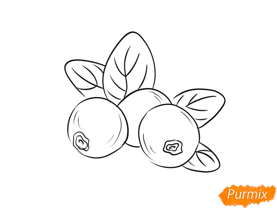 Рисуем бруснику карандашами - шаг 5