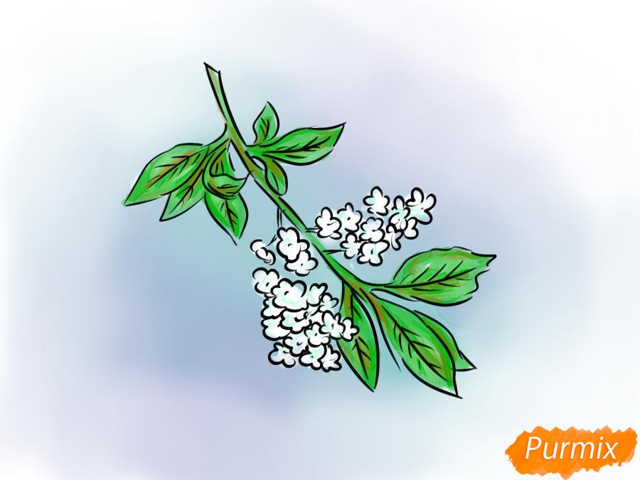 Рисуем черемуху к стихотворению Есенина - шаг 8