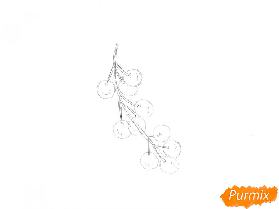 Рисуем черемуху карандашами - шаг 4