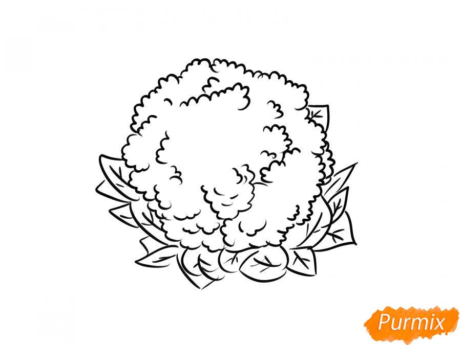 Рисуем цветную капусту карандашами - шаг 5