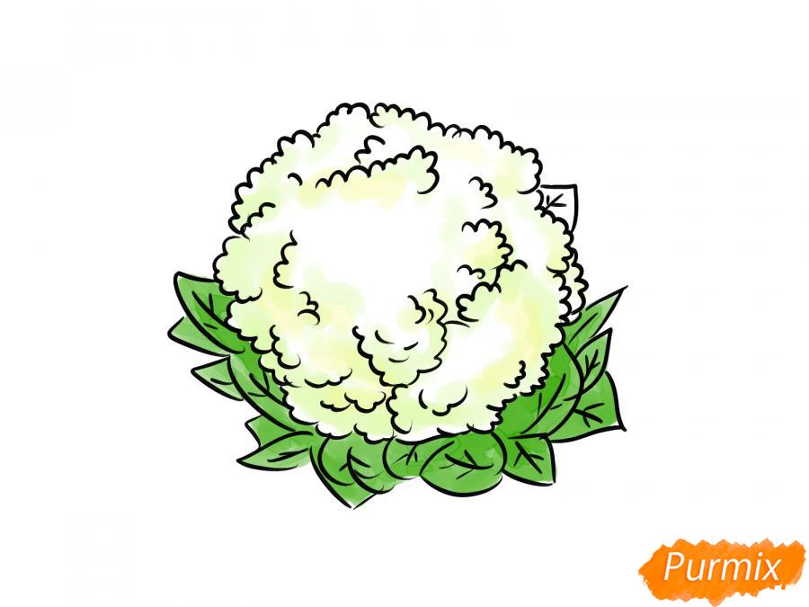 Рисуем цветную капусту карандашами - шаг 7