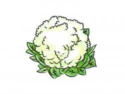 Фото цветную капусту