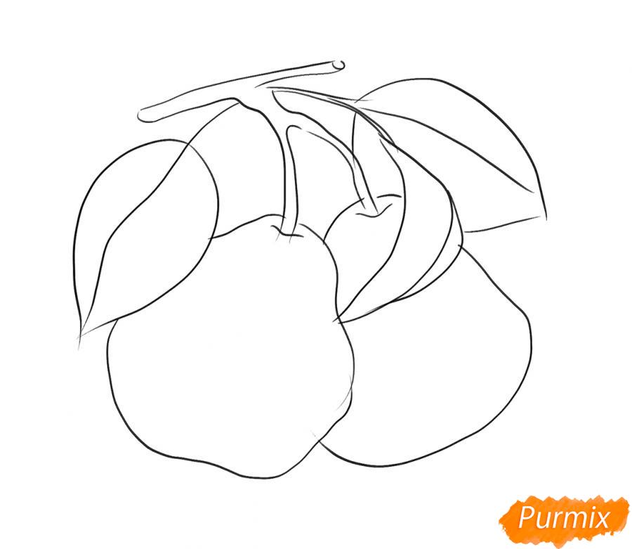 Рисуем две груши на ветке - шаг 4