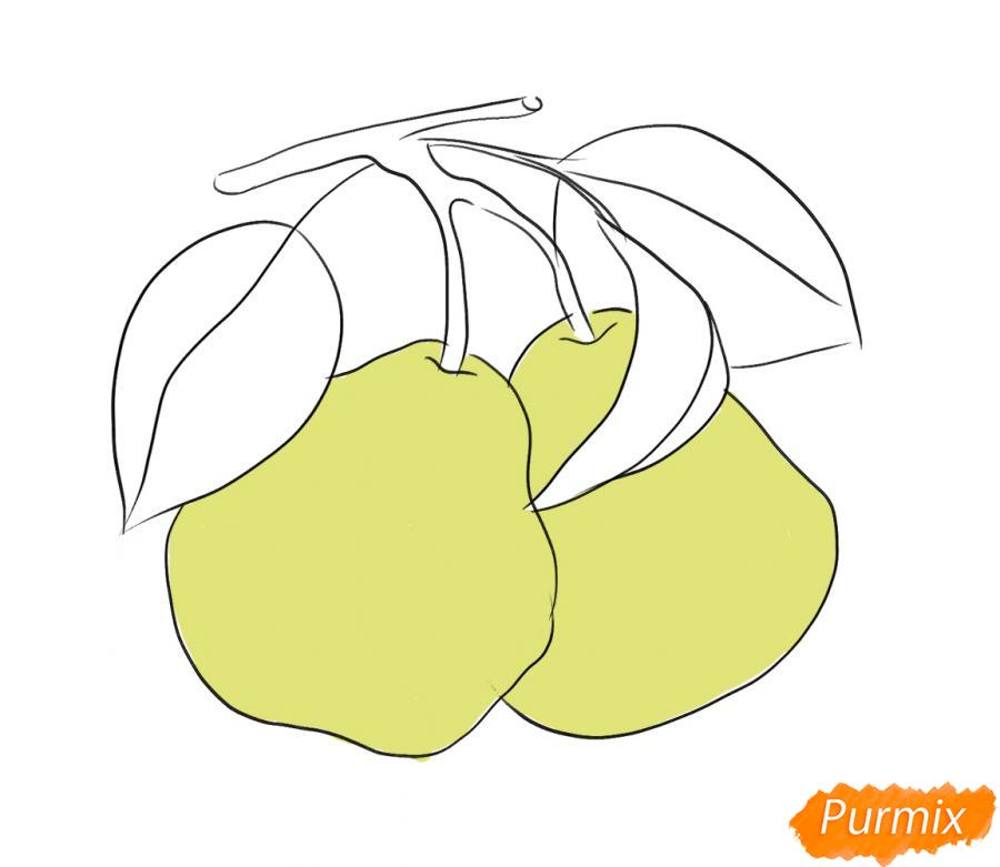 Рисуем две груши на ветке - шаг 5