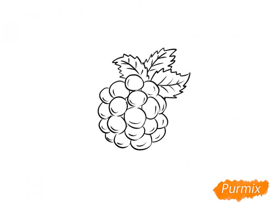 Рисуем ежевику карандашами - шаг 5
