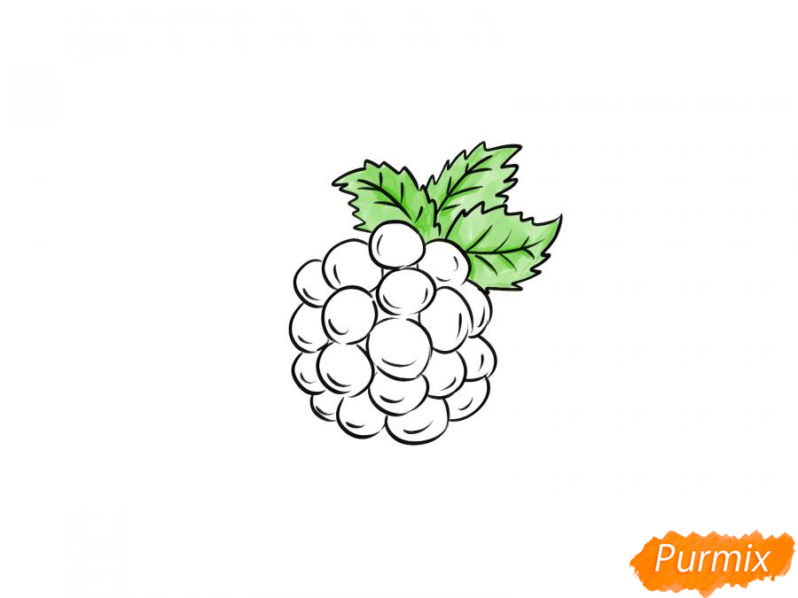 Рисуем ежевику карандашами - шаг 6