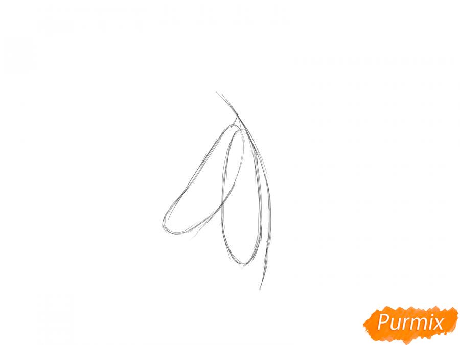 Рисуем фасоль на ветке - шаг 2