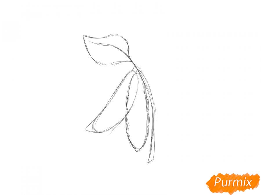 Рисуем фасоль на ветке - шаг 3