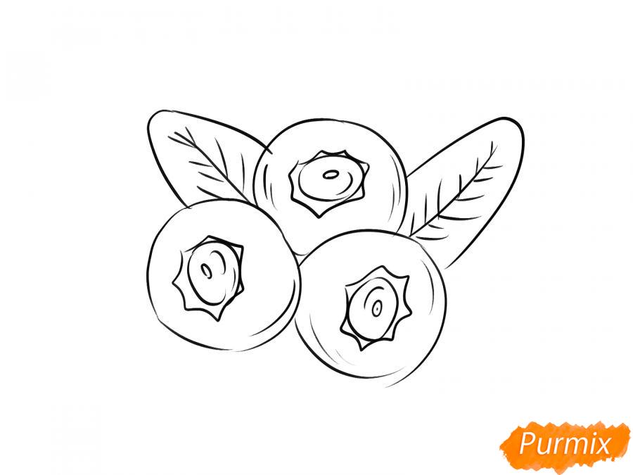 Рисуем голубику карандашами - шаг 5