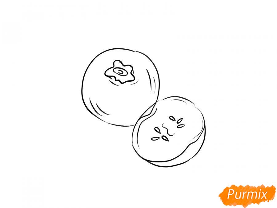 Рисуем голубику в разрезе - шаг 4