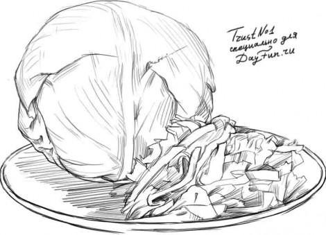 Рисуем качан и нарезанную капусту - шаг 4