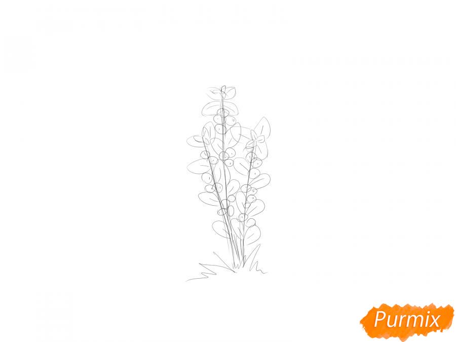 Рисуем куст клюквы - шаг 4