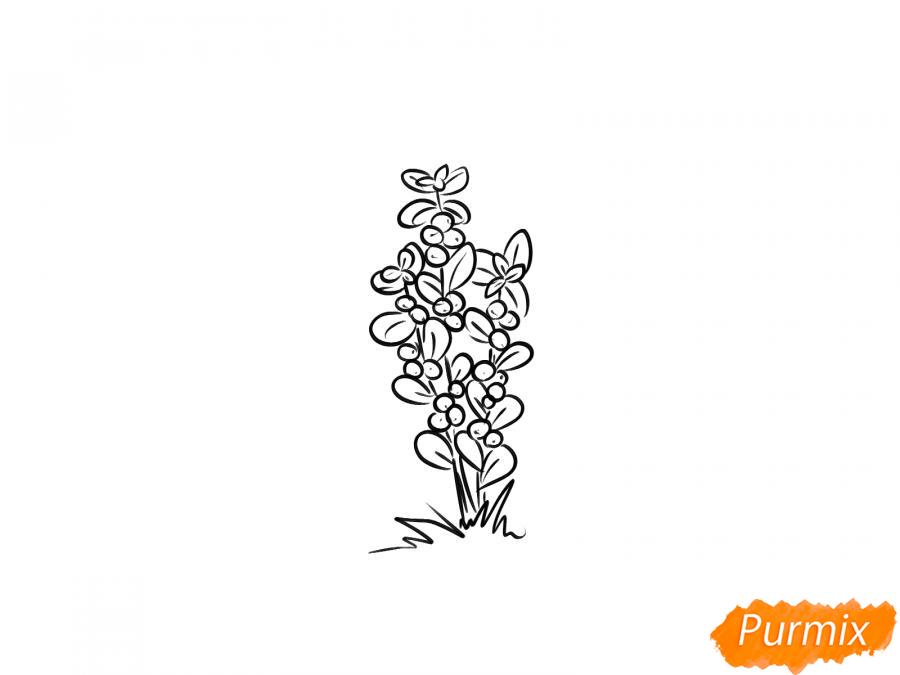 Рисуем куст клюквы - шаг 5