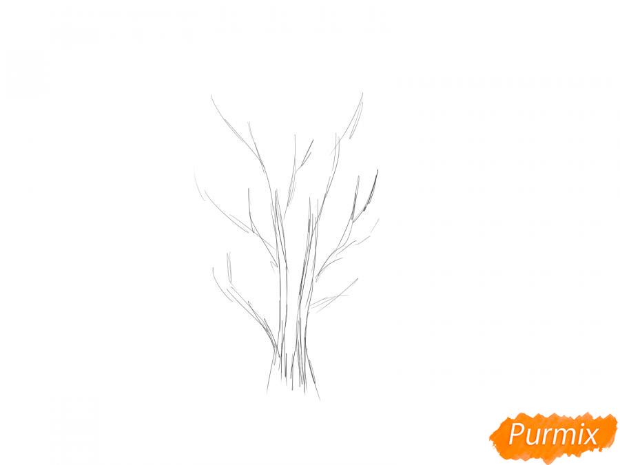 Рисуем куст рябины - шаг 1