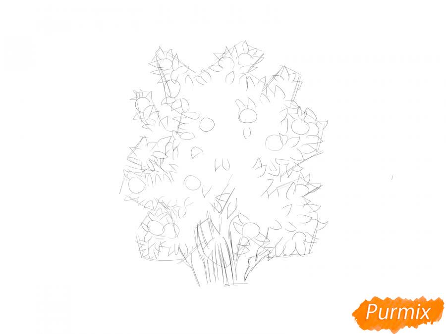 Рисуем куст шиповника - шаг 3