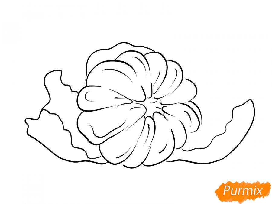 Рисуем мандарин без кожуры - шаг 4