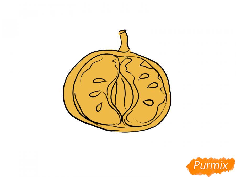 Рисуем мандарин в разрезе - шаг 5