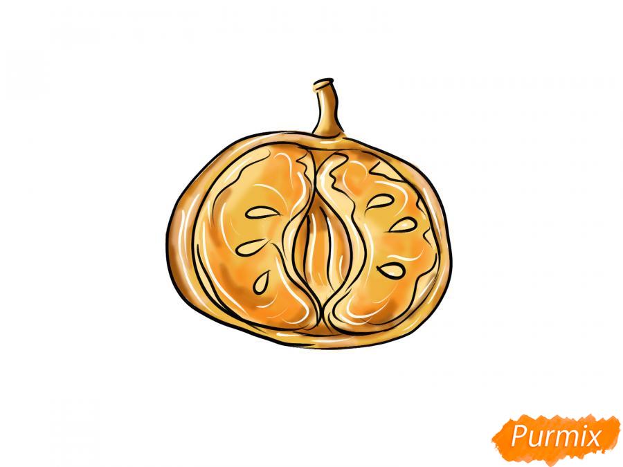 Рисуем мандарин в разрезе - шаг 8