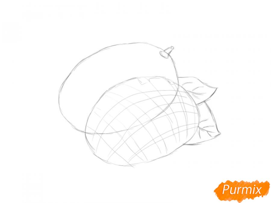 Рисуем манго в разрезе - шаг 3