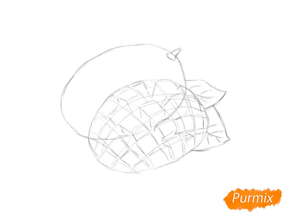 Рисуем манго в разрезе - шаг 4