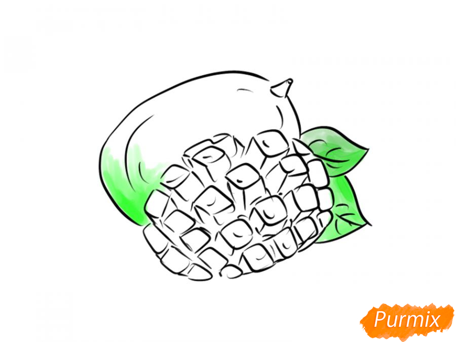 Рисуем манго в разрезе - шаг 7