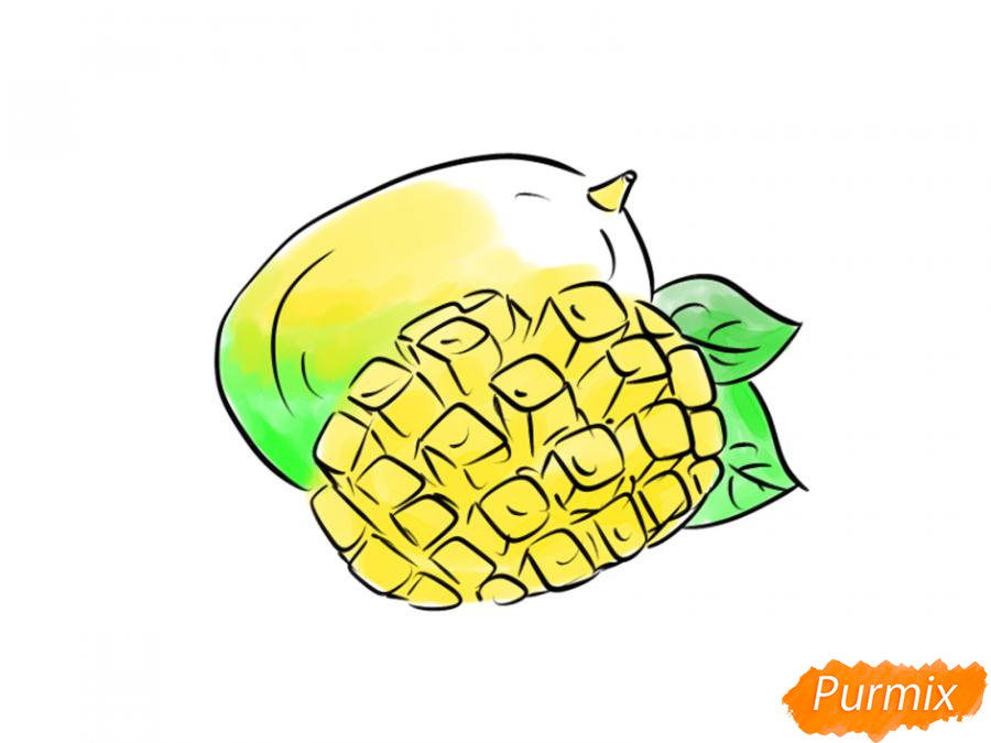 Рисуем манго в разрезе - шаг 8