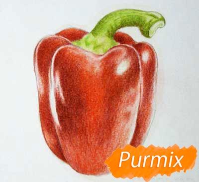 Рисуем один красный болгарский перец - шаг 4