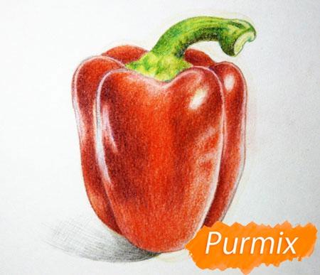 Рисуем один красный болгарский перец - шаг 5