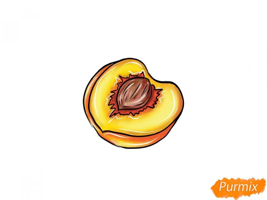 Рисуем персик в разрезе - шаг 10