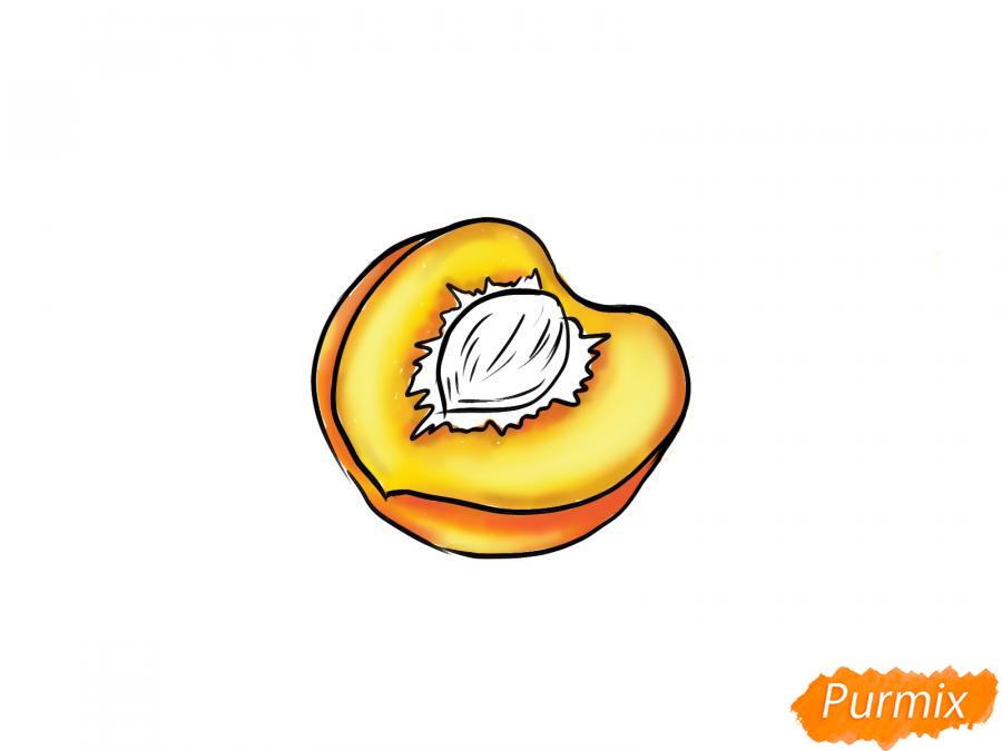 Рисуем персик в разрезе - шаг 7