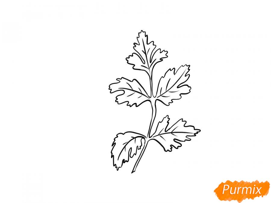 Рисуем петрушку зелень - шаг 5