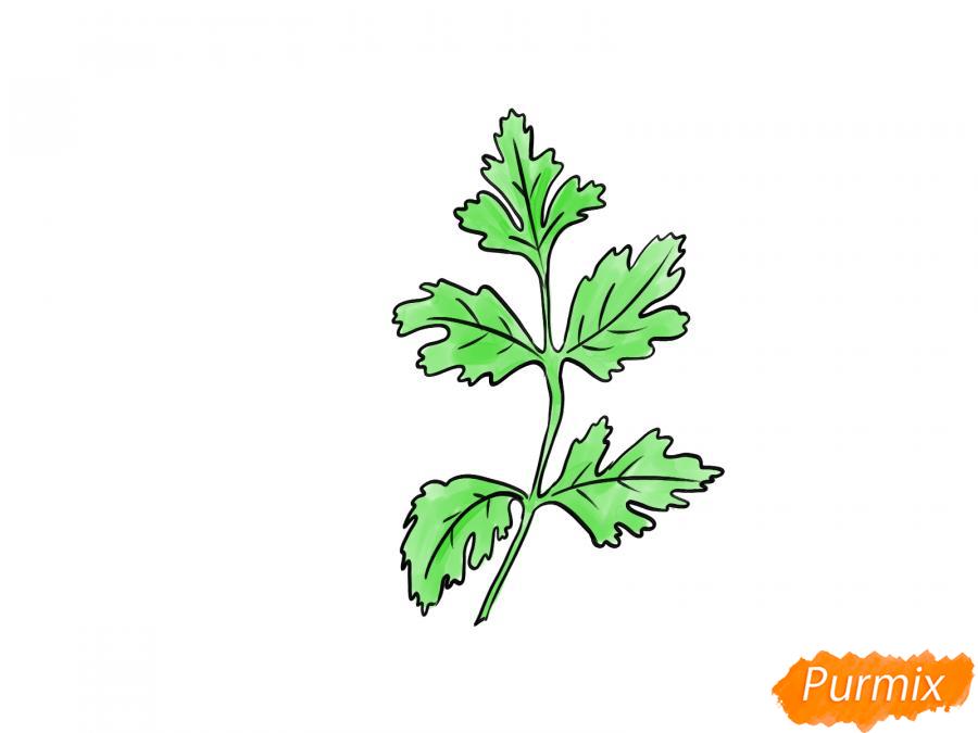 Рисуем петрушку зелень - шаг 6
