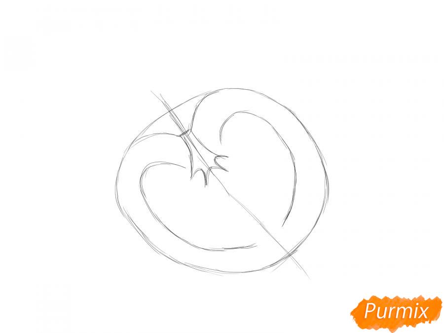 Рисуем помидор в разрезе - шаг 3
