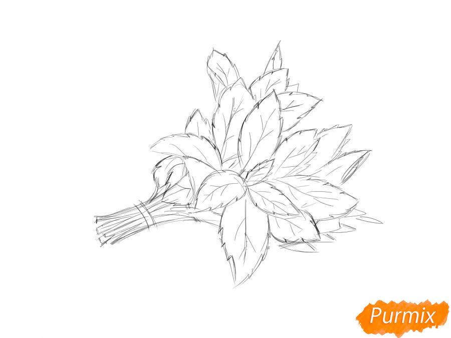 Рисуем пучок мяты - шаг 5