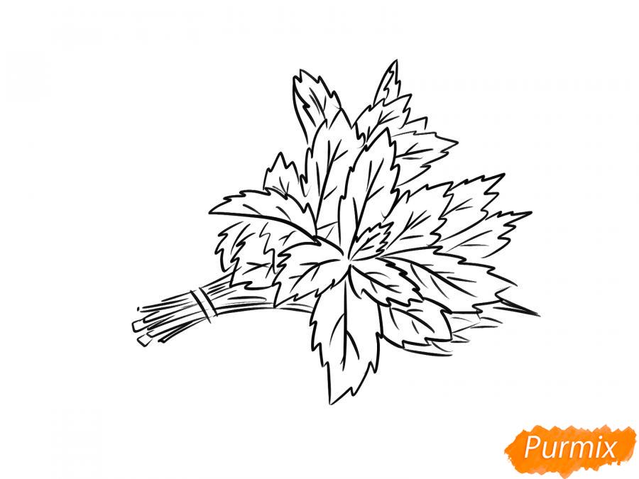 Рисуем пучок мяты - шаг 6