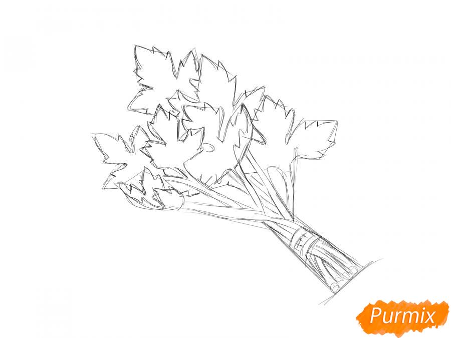 Рисуем пучок петрушки - шаг 4