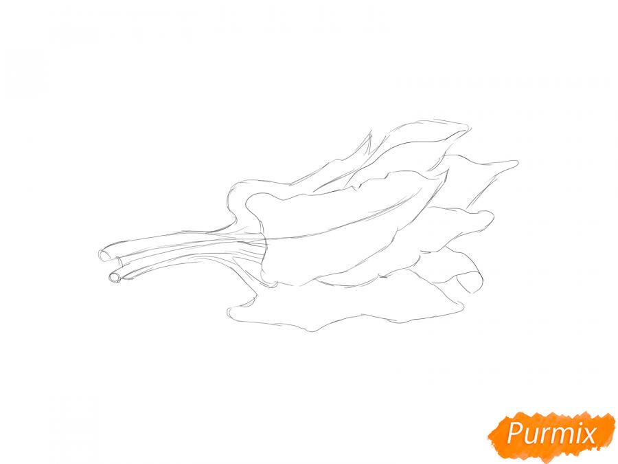 Рисуем пучок щавеля - шаг 3