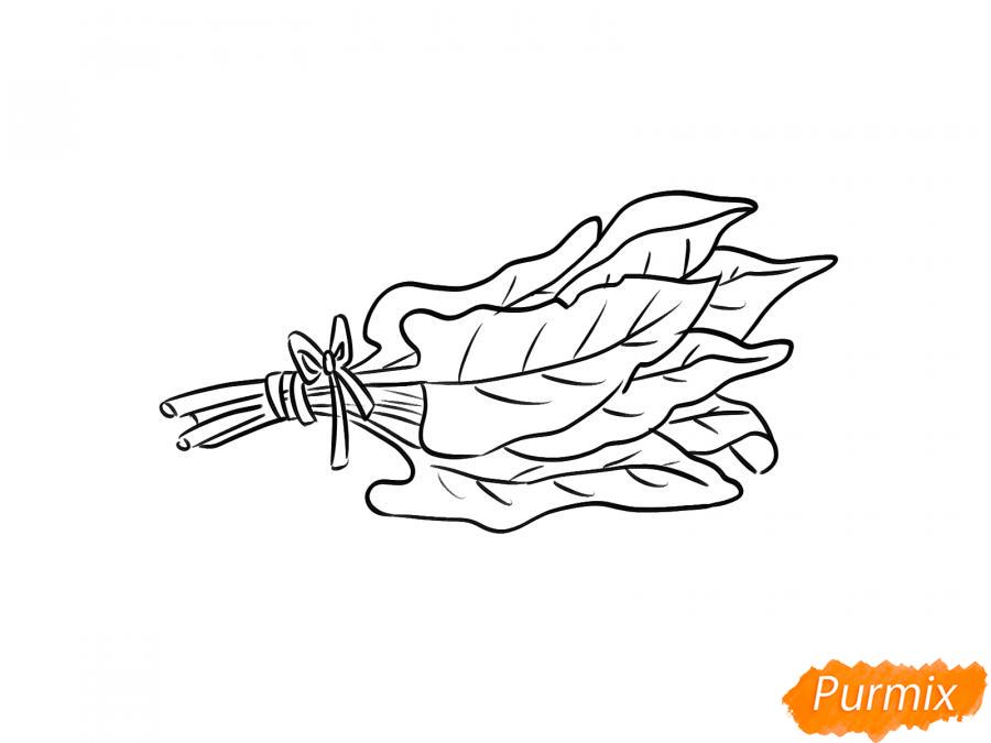 Рисуем пучок щавеля - шаг 6