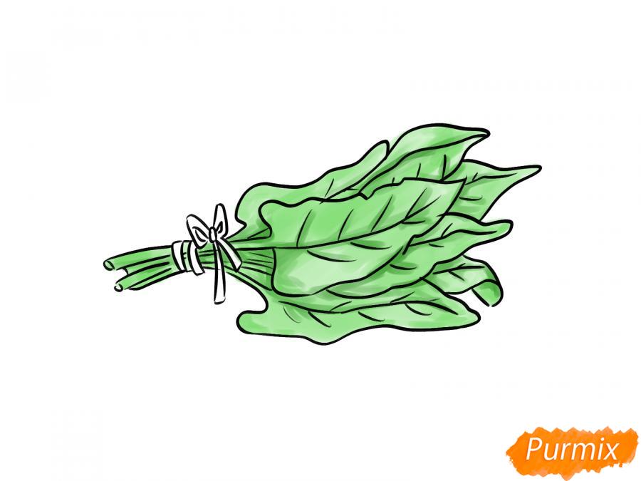 Рисуем пучок щавеля - шаг 7