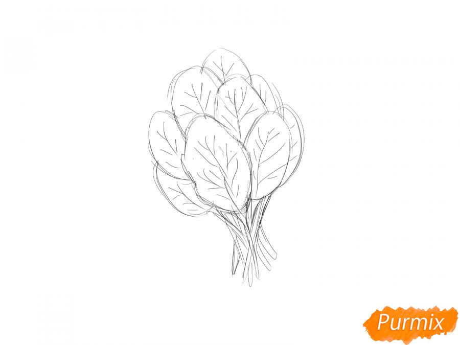 Рисуем пучок шпината - шаг 4