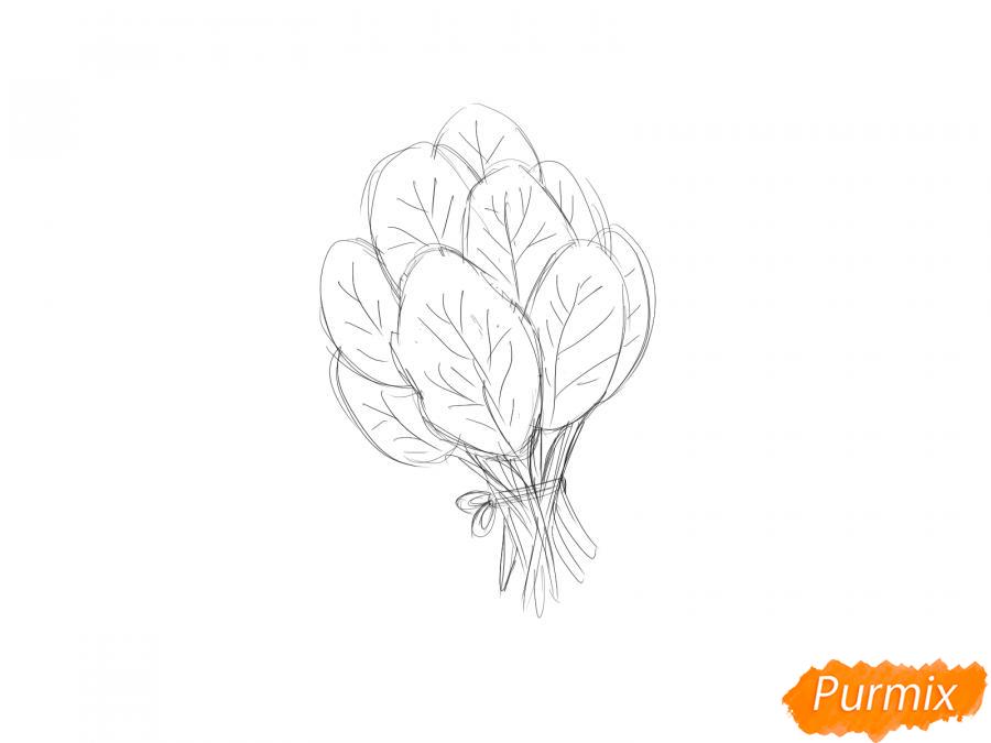 Рисуем пучок шпината - шаг 5