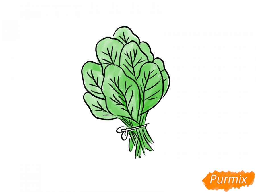 Рисуем пучок шпината - шаг 7