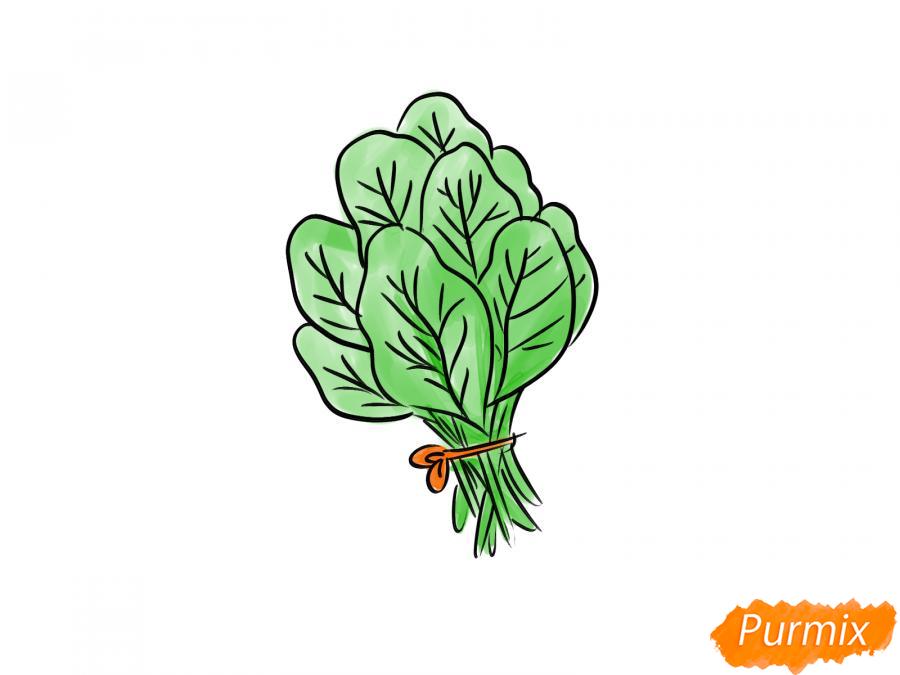 Рисуем пучок шпината - шаг 8