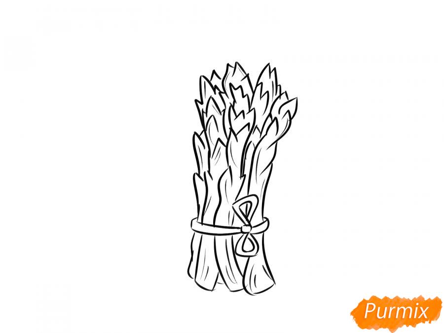 Рисуем пучок спаржи - шаг 5